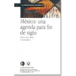 México: una agenda para fin de siglo